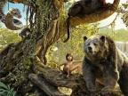 Księga dżungli / 2D i 3D