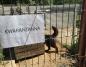 Rusza budowa nowej kwarantanny dla bezdomnych zwierząt