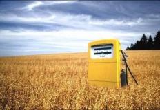 Biopaliwa – co należy o ni ...