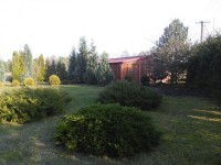 Działka 500 m2 +DOM 80m2 j. Wilczyńskie Zygmuntowo Wilczyn