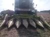 koszenie kukurydzy na ziarno claas