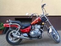 Kawasaki Vulcan EN 500 A motor