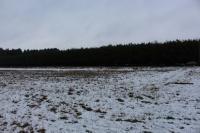 Działka przy lesie w Starym Mieście 19a!