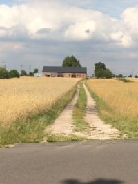 Grunt 8,2 ha, dom + zabudowania, 520 tys. do neg.