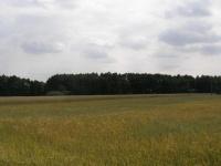 Działka w okolicy jeziora Głodowskiego