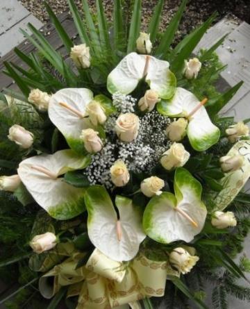 Kwiacia ia u Anny