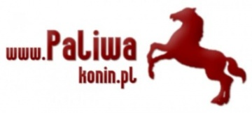 *    www.paliwakonin.pl    *