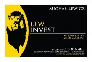 LewINVEST