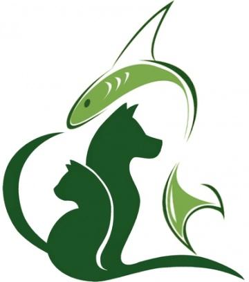 Strzyżenie i pielęgnacja psów i kotów