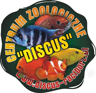Internetowy Sklep Zoologiczny DISCUS