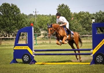Nauka jazdy konnej Konin