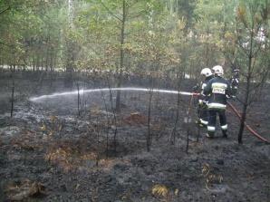 Osiem zastępów strażackich walczyło z pożarem suchej trawy