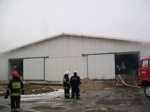 Siernicze Małe. Pożar w chlewni. W budynku było 2,5 tysiąca świń