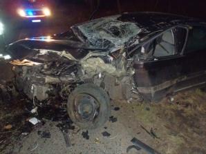Wypadek w Drzewcach. Jadący citroenem 22-latek uderzył w drzewo