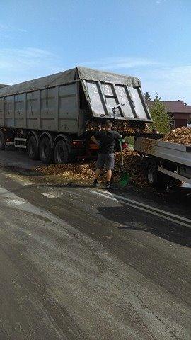 Golina. Dwie tony odpadów po cebuli na drodze krajowej nr 92
