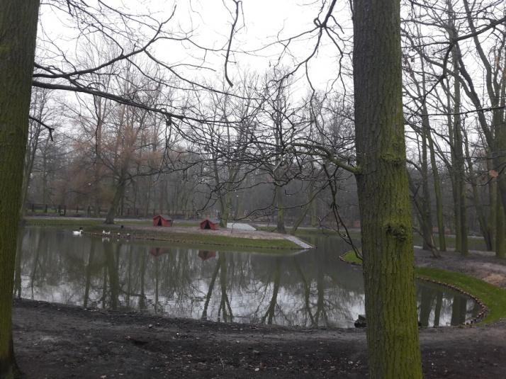 Staw w konińskim parku jak nowy! Renowacja ze środków KBO