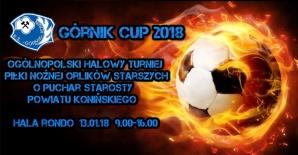 Sportowy weekend: Kolejne dwa turnieje Górnik Cup 2018