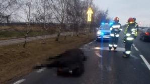 Uderzył w konia i odjechał. Zwierzę leżało martwe na drodze