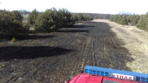 Golina Kolonia. Pożar trawa rozprzestrzenił się z powodu wiatru