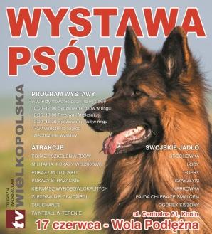 Piknik, wystawa owczarków niemieckich i pokaz szkolenia psów