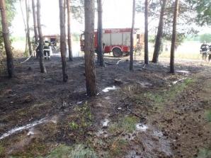 Pracowity weekend słupeckich strażaków. Palił się las i siano