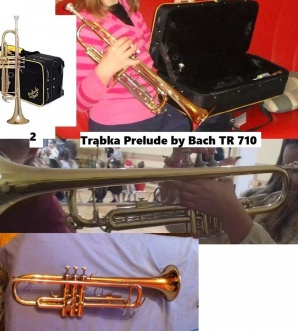 Złodzieje grasowali w GOK. Zniknęły instrumenty orkiestry dętej