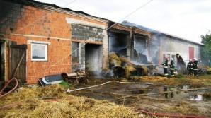 Pożar dwóch gospodarstw. Z ogniem walczyło ponad 60 strażaków