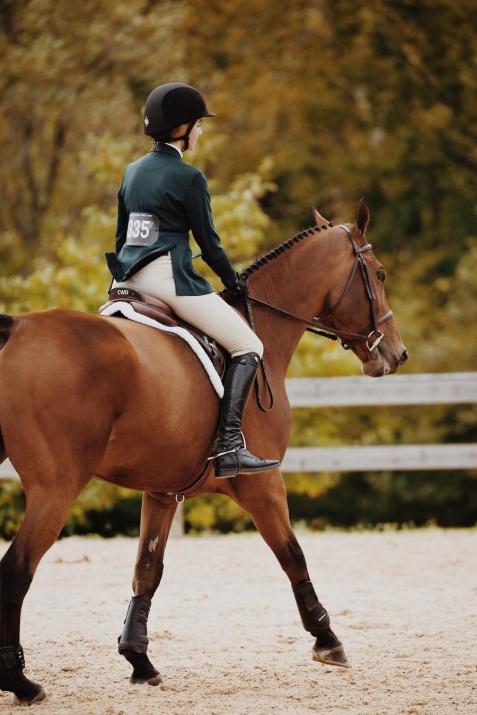 Jakie buty do jazdy konnej wybrać?