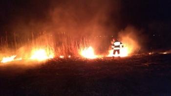 Stop pożarom traw. Strażacy odnotowali dziewięć takich zdarzeń