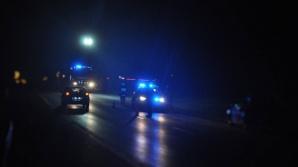 Golina. Trzy uszkodzone samochody po kolizji z dzikami na K 92