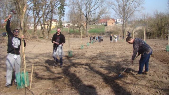 Radolina. Grabili liście i sadzili drzewa. Wiosenne porządki w parku