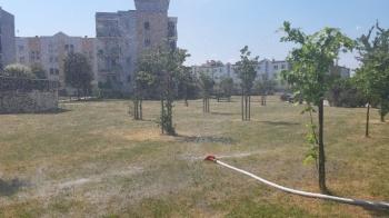 Strażacy ochotnicy z Chorznia i ze Starówki pomagają się schłodzić