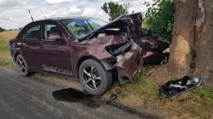 Wypadek w Przecławiu. Kierujący osobową skodą uderzył w drzewo
