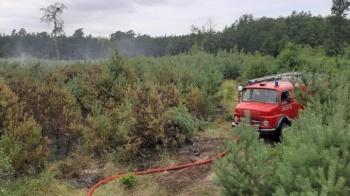 Wierzbinek. Sześć zastępów ponad 7 godzin gasiło pożar młodnika
