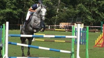 Konie na start. Czwarte eliminacje do Jeździeckiego Pucharu Trójki