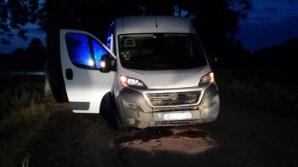 Groźny wypadek w Żelazkowie. Kierujący busem potrącił dzika