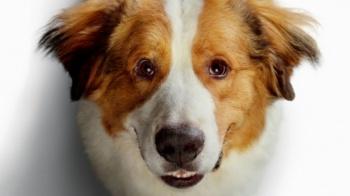 Był sobie pies 2 - przedpremierowo w Kinie Centrum