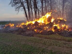 Pokoje. Podpalenie mogło być przyczyną pożaru stogu słomy