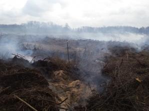 Dębowiec. Pożar na nieużytkach rolnych. 7 godzin akcji gaśniczej