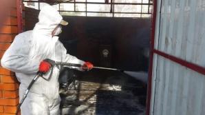 Konin. Ruszyła dezynfekcja altan śmietnikowych na osiedlu Zatorze
