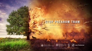 Stop pożarom traw! Konińscy strażacy apelują o ich niewypalanie