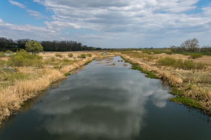 Tak źle nie było od wielu lat. Niskie stany rzek w regionie