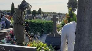 Kramsk. Parafia ostrzega przed gniazdami owadów na cmentarzu