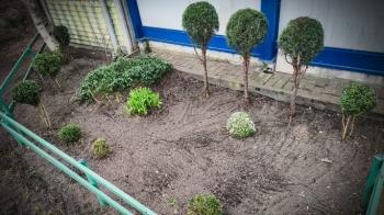 Konin. Przed schroniskiem powstaje ogródek. Rośliny mile widziane