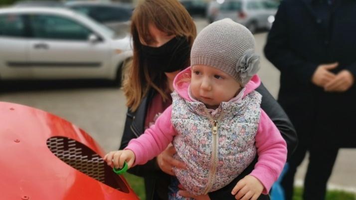 Metalowe serca w gminie Kramsk pompują dobro dla Alicji i Jowity