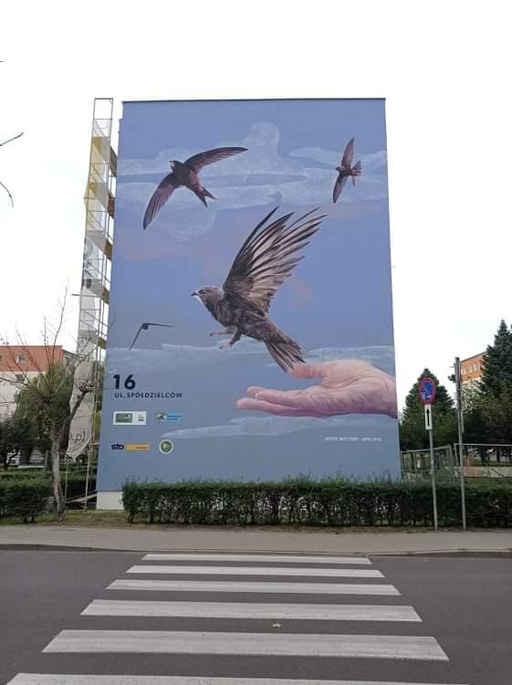 Ptasi mural na turkowskim osiedlu. Mieszkańcy mogą być dumni