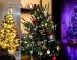Najpiękniejsze choinki! Pokazaliście nam świąteczne drzewka