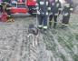 Konińscy strażacy uratowali psa, który spadł ze stromej skarpy