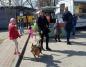Wspólnie z psami przywitali wiosnę w konińskim schronisku