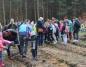 Sadzili nowy las. W Puszczy Bieniszewskiej przybyło sosen